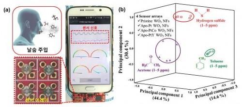 바이오마커 가스 센서 모듈을 스마트폰에 적용한 모습 (왼쪽)과 생체지표 기체 3종(아세톤, 톨루엔, 황화수소)을 패턴 인식으로 구별한 결과 (오른쪽) - KAIST 제공